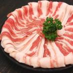 肉 豚肉 豚バラ スライス 500g 精肉 特価 セール 冷凍 切り落とし 訳あり わけあり ワケあり