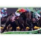 オーナーズホース01 H026:ストロングリターン(ニュー