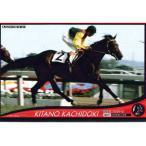 オーナーズホース03 H035:キタノカチドキ(年度代表馬/ノーマル黒) バンダイ ネットカードダス