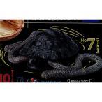 松本人志 世界の珍獣 第二弾 1:テナガガメ(手長亀) タカラトミーアーツ ガチャポン画像