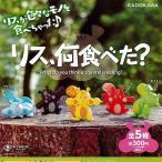 リス、何食べた 全5種+ディスプレイ台紙セット -セール品- KADOKAWA ガチャポン ガチャガチャ ガシャポン