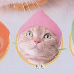 かわいいかわいい ねこフルーツちゃん 2 4:もも ねこのかぶりもの第20弾 奇譚クラブ ガチャポン ガチャガチャ ガシャポン