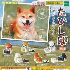 たびしば 全6種セット 12月予約 動物フィギュア 柴犬 エポック社 ガチャポン ガチャガチャ ガシャポン