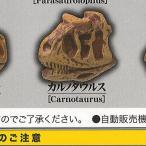 いにしえの恐竜展 2億3000万年前で君と会う 9:カルノタウルス エール ガチャポン ガチャガチャ ガシャポン