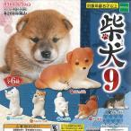 柴犬 9 全6種セット 12月予約 エポック社 動物フィギ
