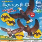 鳥たちの 世界 全3種+ディスプレイ台紙セット タカラトミーアーツ ガチャポン ガチャガチャ ガシャポン