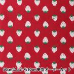 Yahoo!ユザワヤ【生地セール】 【数量5から】 生地 『ホーミーコレクション コットン イチゴ柄 HC1097S B』