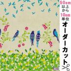 【数量5から】KOKKA echino スタンダード Birdsong キャンバス生地 [JG90010 生地 布 エチノ バードソング 古家悦子 コ