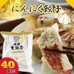 にんにく餃子 40個 ぎょうざ 冷凍餃子 冷凍食品 お取り寄せ 惣菜 おつまみ 金星食品