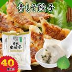 青しそ餃子 40個 ぎょうざ 冷凍餃子 冷凍食品 お取り寄せ 惣菜 おつまみ 金星食品