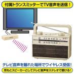 OHM AM/FMラジオ付き ワイヤレス耳もとスピーカー RAD-M067Z-NE 07-9807 シャンパンゴールド 送料無料(沖縄県を除く)