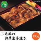 三元豚の肉厚生姜焼き 100g 味の素 おかず 和風料理