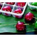 鏡梅 ( 赤 ) 15個入 ヤマ食 一口サイズ 小分け 15人分 赤梅甘露煮 かんろに ウメ ゼリー デザート 和菓子 業務用 [冷凍食品]