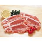 豚ロース・カツ用 100g×5枚組  輸入 冷凍豚肉  豚ロース ロース 冷凍食品 業務用