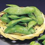 茶豆 500g  GFC 冷凍枝豆  枝豆 茶豆 冷凍食品 業務用