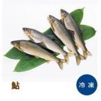 鮎 1kg ( 11尾 ) 11匹 アユ あゆ 塩焼き 大容量 まとめ買い 魚介類 海鮮 調理具材 料理材料 家庭用 業務用 [冷凍食品]