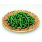 業務用 すじなしいんげん豆S500g 冷凍保存食品 冷凍食品 食材