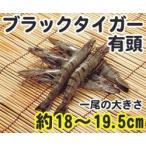 ブラックタイガーエビ 有頭 30尾 1.3kg 輸入 30匹 魚介類 海鮮 ブラックタイガー海老 えび BBQに 大容量 まとめ買い 業務用 [冷凍食品]