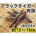 ブラックタイガーエビ 有頭 60尾 1.3kg 輸入 60匹 魚介類 海鮮 ブラックタイガー海老 えび BBQに 大容量 まとめ買い 業務用 [冷凍食品]