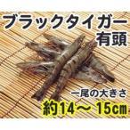 ブラックタイガーエビ 有頭 50尾 1.3kg 輸入 50匹 魚介類 海鮮 ブラックタイガー海老 えび BBQに 大容量 まとめ買い 業務用 [冷凍食品]