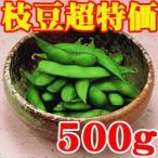 業務用 冷凍枝豆500g 冷凍保存食品 冷凍食品 食材