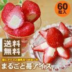 苺アイス30粒入り×2袋★60粒入り 送料無料 ヒカリ乳業 イチゴアイス 苺あいす 冷凍食品 セット商品