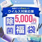 除菌福袋 5000円 不織布マスク 50枚入り 除菌シート 除菌スプレー 除菌ボックス マスクベルト 抗菌 防臭 マスク