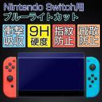 Switch ガラスフィルム Switch ブルーライトカット 強化ガラスフィルム 9H Nintendo Switch 保護フィルム ニンテンドースイッチ フィルム 指紋防止 高透過率