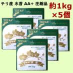 チリ産水ゴケ AA+ 約1kg×5袋セット 圧縮品