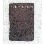ヘゴ板 約20×30cm