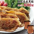 あすつく 財宝 こだわり黒豚生姜焼き 600g (300g×2) 送料無料 鹿児島県産 純粋黒豚 豚肉 冷凍