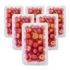 アセロラの実 冷凍 1.5kg (250g×6パック) 送料無料 国産 沖縄県産 果実