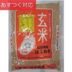 山形県産 玄米 3kg