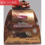 プラリネ セレクション チョコレート 300g ウイターズ