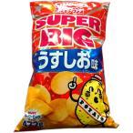 ポテトチップス 大袋 カルビー ポテトチップス スーパービッグ SUPER BIG うす塩味 500g