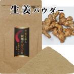 送料無料 野菜パウダー 生姜 パウダー 国産100% 無農薬 野菜粉末 健康 美容 20g