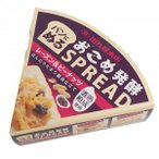 田丸屋本店 おこめ発酵スプレッド レーズン&ピーナッツ 70g×10個セット