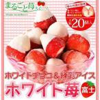 イチゴ アイスクリーム ホワイトチョコ&練乳アイス ホワイト苺 送料無料
