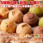 しっとり豆乳おからクッキー新発売 訳あり おから豆乳クッキー1kg 5種セット