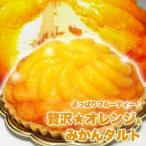 みかんたっぷり オレンジタルトケーキ  オレンジ&みかんタルト 送料無料