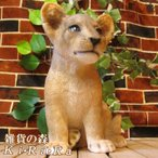 Yahoo!雑貨の森 Ki・Ra・Ra Yahoo!店ライオンの置物 リアルな動物の置物 ベビーライオンのフィギア オブジェ 玄関先 ガーデニング アニマル雑貨