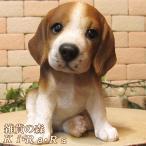 犬の置物 ビーグル リアルな犬の置物 お座りタイプ 子いぬのフィギア イヌのオブジェ ガーデニング 玄関先 陶器