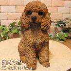犬の置物 プードル B リアルな犬の置物 お座りタイプ いぬのフィギア イヌのオブジェ ガーデニング 玄関先 陶器