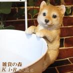 リアルな犬の置物 チビぶらドッグ 柴犬 子いぬのフィギア イヌのオブジェ ガーデニング 玄関先 陶器