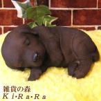 ラブラドールレトリバー リアルな犬の置物 お昼寝中 チョコ 子いぬのフィギア イヌのオブジェ ガーデニング 玄関先 陶器