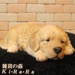 犬の置物 ゴールデンレトリバー リアルな犬の置物 ウトウト・ねむねむ 子いぬのフィギア イヌのオブジェ ガーデニング 玄関先 陶器