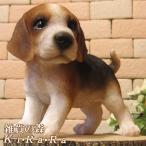 犬の置物 ビーグル スタンド スモールサイズ リアルな犬の置物 子いぬのフィギア イヌのオブジェ ガーデニング 玄関先 陶器