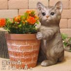 猫の置物 猫とミニ鉢カバー リアルな ねこの置物 キャット グレー ネコのフィギア オブジェ ガーデニング 玄関先 陶器