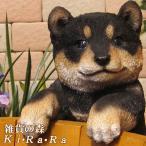 犬の置物 黒柴 リアルな 柴犬の置物 ぶらさがりドッグ 子いぬのフィギア イヌのオブジェ ガーデニング 玄関先 陶器