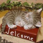 猫の置物 ウエルカムブック ブラウングレー リアルな ねこの置物 猫雑貨 ネコのフィギア オブジェ ガーデニング 玄関先 陶器 ガーデン
